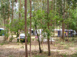terrein camping